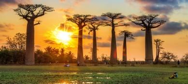2016-Madagascar-Africa-Classic-Madagascar-SS