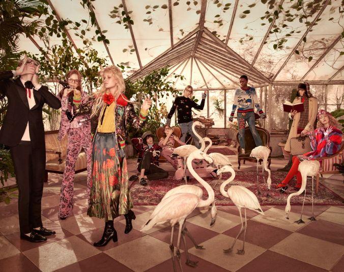 Gucci Flamingos