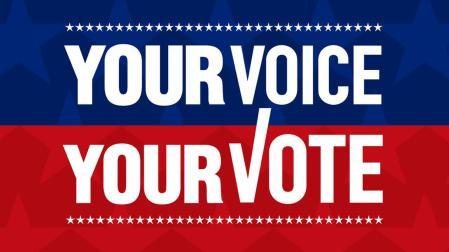 voice-vote